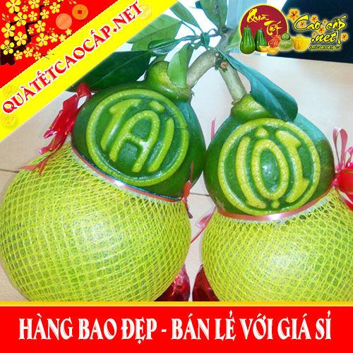 Bưởi Hồ Lô Tài Lộc Đồng Sinh