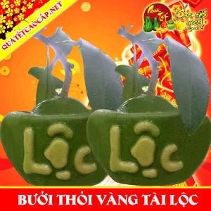 buoi-ho-lo-dong-tien-thoi-vang-new1