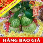 buoi-ho-lo-tai-loc-loai-2-gia-chi-599k-re-nhat-thi-truong