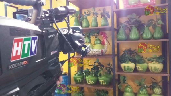 shop bưởi hồ lô tài lộc lên sóng truyền hình HTV7